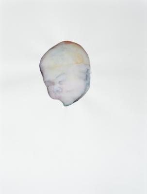 portret 2014